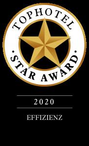 Urkunde_Star-Award_Effizienz_Gold_hotlinecloud-183x300